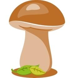 Musroom vector image