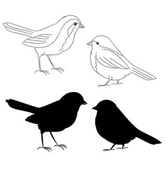 the outline and silhouette birds fifth set vector image vector image