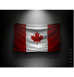 waving flag canada on a dark wall vector image vector image