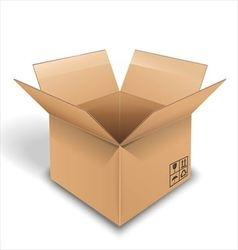 Empty cardboard box opened on white background vector image