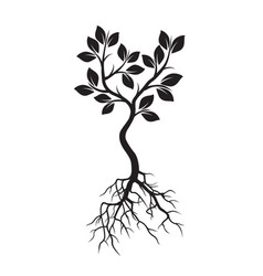 black tree with leafs and roots vector image vector image