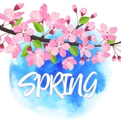Spring lettering blossoming tree brunch with vector