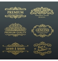 Vintage golden banners labels frames vector