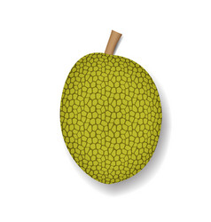 Isolated jackfruit on white realistic vector