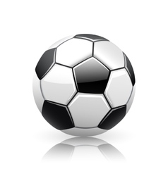 Realistic soccer ball vector