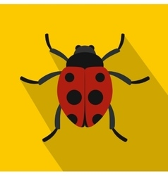 Red ladybird icon flat style vector