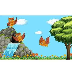 Three owls flying over waterfall vector image
