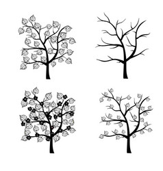 Trees seasons collection vector