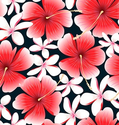 Red tropical hibiscus flower with frangipani vector