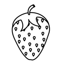 delicious strawberry fruit icon vector image
