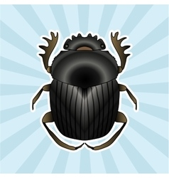 Insect anatomy sticker geotrupidae dor-beetle vector
