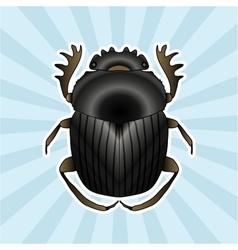 Insect anatomy sticker geotrupidae dor-beetle vector