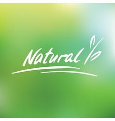 Handwritten logo natural vector