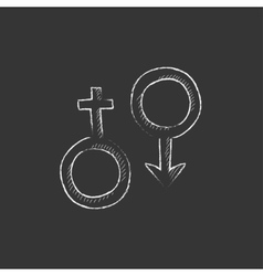 Male and female symbol drawn in chalk icon vector