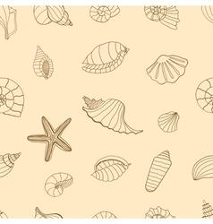 Brown Sea shells vector image