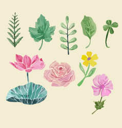 Colorful floral collection with leaves and vector