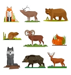Mammal animals set in flat style design vector image vector image