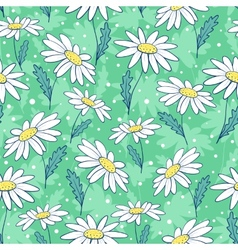 Beautiful camomile flowers seamless pattern vector image