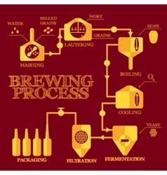 Brewery process infographics vector