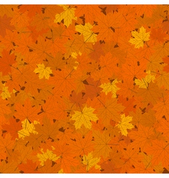 Fallen Maple Leaves Seamless Background vector image