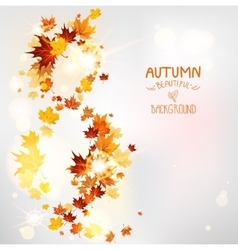 Autumn swirl of leaves vector