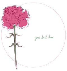 carnation simple card vector image vector image
