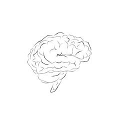 Doodle brain vector