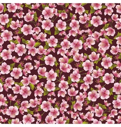 Background seamless pattern with sakura blossom vector image vector image