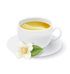 Jasmine tea cup vector