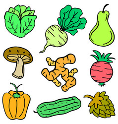 Vegetable object set vector