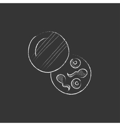 Donor sperm drawn in chalk icon vector