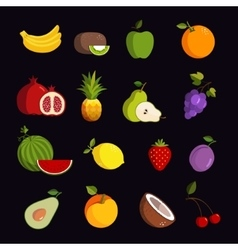Modern fruit icon set vector image