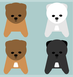 Puppy or pup orange grey white colour vector