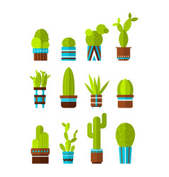 set of cacti succulents flat color icons vector image vector image