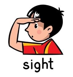 Sight sense icon vector