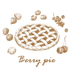 Berry pie vector