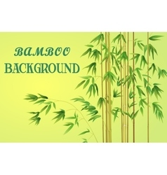 Bamboo Stem with Green Leaves vector image