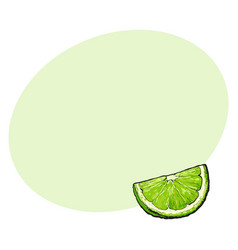 quarter segment piece of ripe green lime vector image vector image