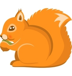 Cartoon squirel isolated vector