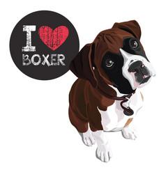 i love boxer vector image