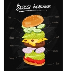 Burger ingredients on chalkboard vector
