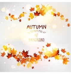 Autumn swirl of maple leaves vector