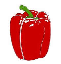 Bell pepper bulgarian vector