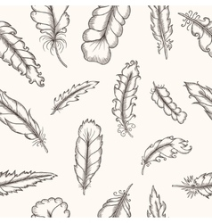 Feathers seamless pattern Hand drawn vintage vector image vector image