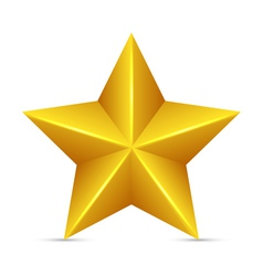 Glossy Yellow Star vector image