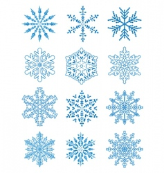 12 snowflakes vector image vector image