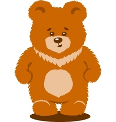 Cute Brown Bear Isolated vector image vector image