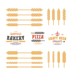 Set of stylized ear wheat template labels vector