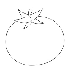 Tomato icon outline Singe vegetables icon from vector image