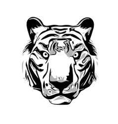 Head of tiger vector